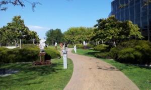 GooglePlex walkway
